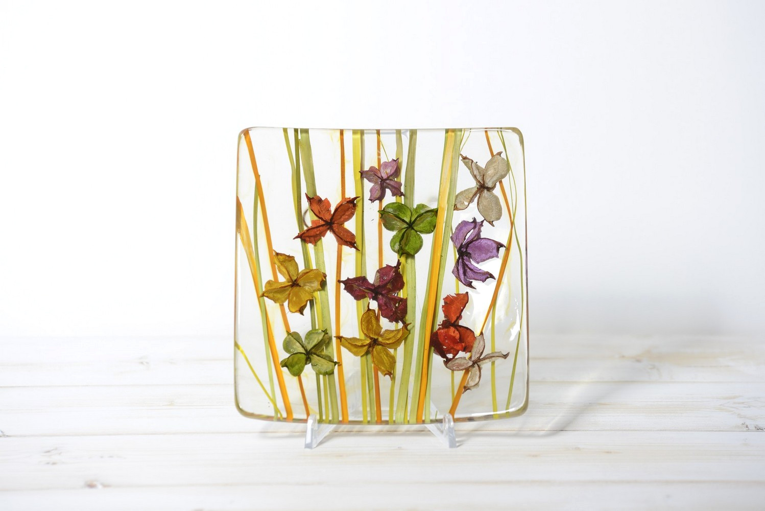 "Square Plate ""VELA"" Butterfly Collection"
