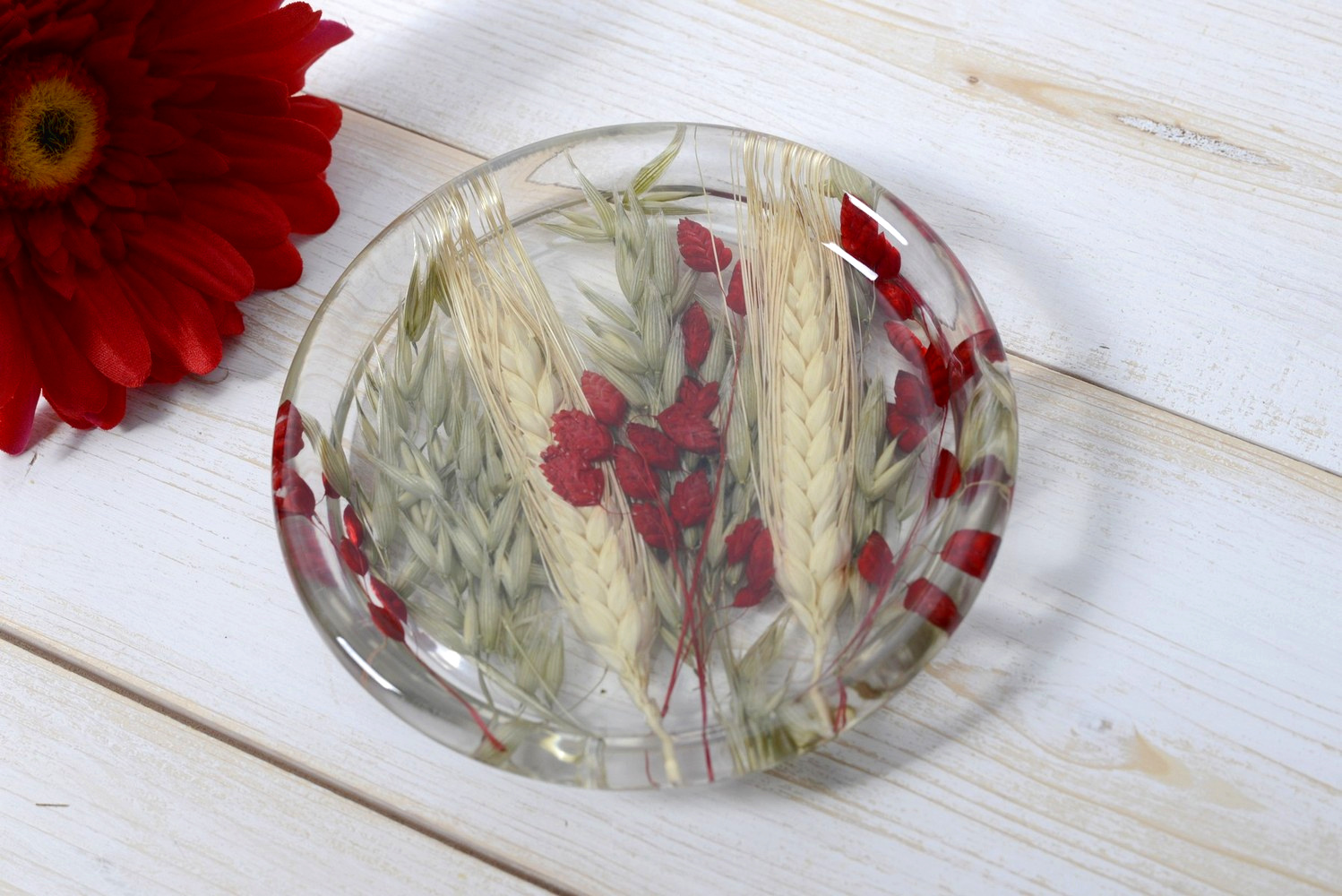 Small Round Plate Wheat in Red Collection diam cm 12 h1,5